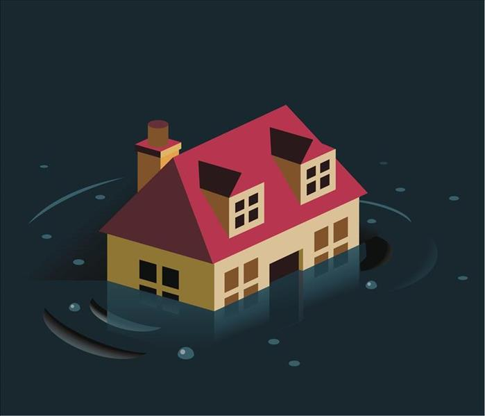 Home in a Flood