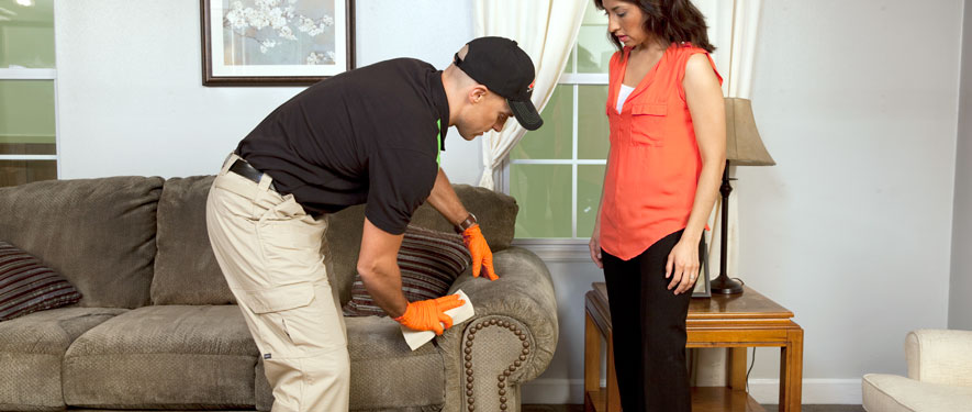 Mississauga, ON carpet upholstery cleaning