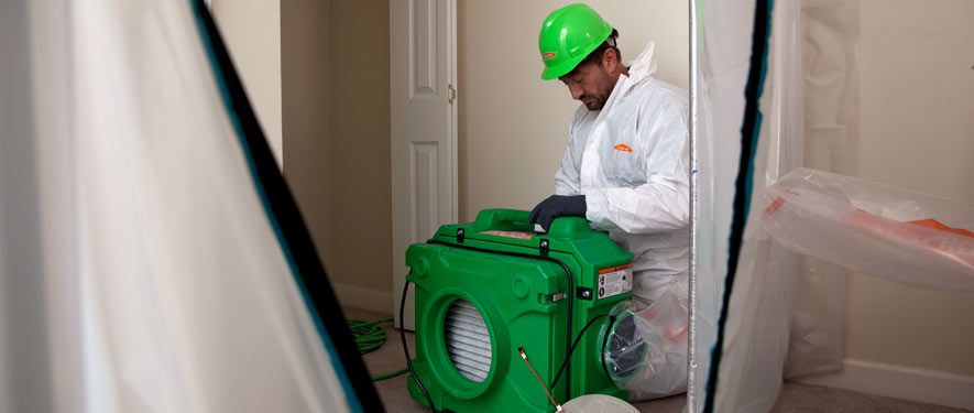 Mississauga, ON mold cleanup
